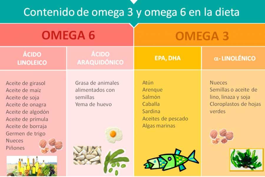 Contenido de omega-3 y omega-6 en la dieta